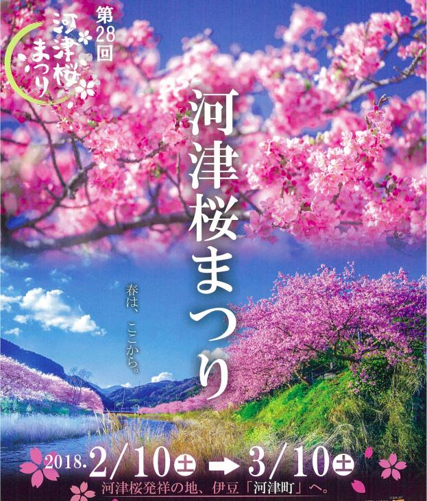河津櫻花祭
